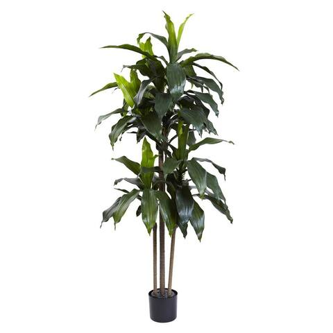 Nearly Natural Home Office Decorative 5' Dracaena Plant UV Resistant (Indoor/Outdoor) - Not Available