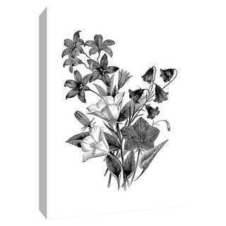 """PTM Images 9-148717  PTM Canvas Collection 10"""" x 8"""" - """"Botanical Black and White II"""" Giclee Flowers Art Print on Canvas"""