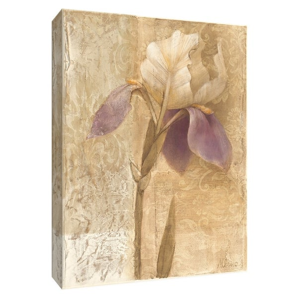 """PTM Images 9-154635 PTM Canvas Collection 10"""" x 8"""" - """"Brocade Iris"""" Giclee Irises Art Print on Canvas"""