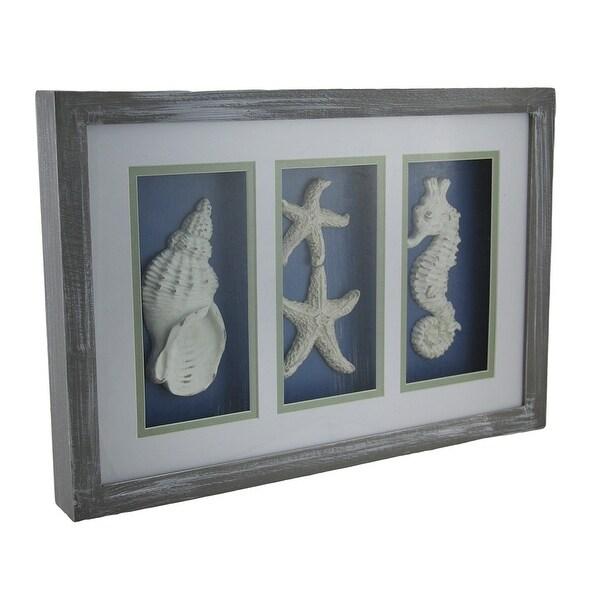 55521cf200 Shop Triple Framed Seashell Ocean Inspired Shadowbox Wall Hanging 15 ...