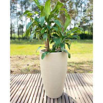 Floridis Amsterdan Medium Planter Bowl - 25.59 inches high x 16.14 inch diameter