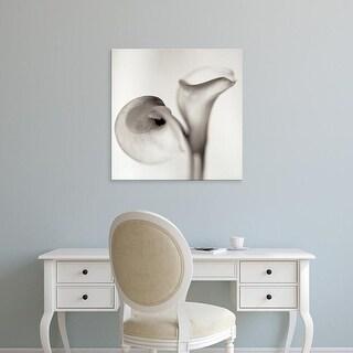 Easy Art Prints Alan Blaustein's 'Florison #35' Premium Canvas Art