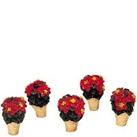 Miniature Poinsettia Set of 5