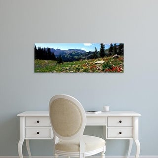 Easy Art Prints Panoramic Image 'Wildflowers, Rendezvous Mountain, Grand Teton National Park, Wyoming' Canvas Art