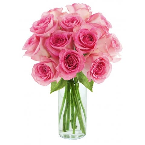 KaBloom: Sweet Pink Bouquet of 12 Fresh Cut Pink Roses (Farm-Fresh, Long-Stem) with Vase