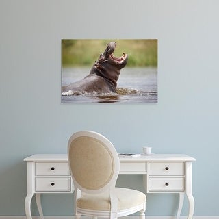 Easy Art Prints Paul Souders's 'Water Hippopotamus' Premium Canvas Art