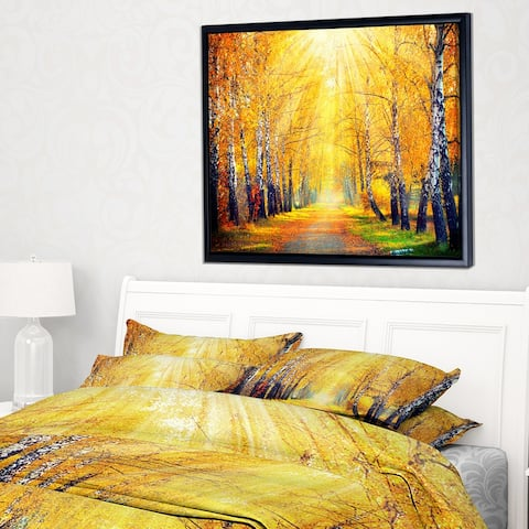 Designart 'Yellow Autumn Trees in Sunray' Large Landscape Framed Canvas Art Print
