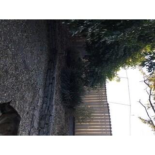 ALEKO 6'X150' Aluminum Eye Fence Privacy Outdoor Backyard Beige Screen