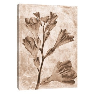 "PTM Images 9-105796  PTM Canvas Collection 10"" x 8"" - ""Sepia Flower Inversions 5"" Giclee Flowers Art Print on Canvas"