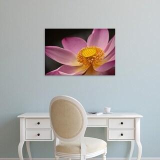 Easy Art Prints Alida Latham's 'Lotus Flower In Full Bloom' Premium Canvas Art