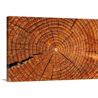 """Close-up of log"" Canvas Wall Art"