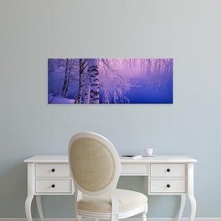 Easy Art Prints Panoramic Images's 'Birch tree at a riverside, Vuoksi River, Imatra, Finland' Premium Canvas Art