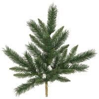 "21"" Imperial Pine Spray27 tips"