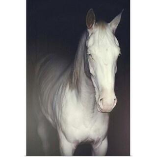 """White Horse"" Poster Print"
