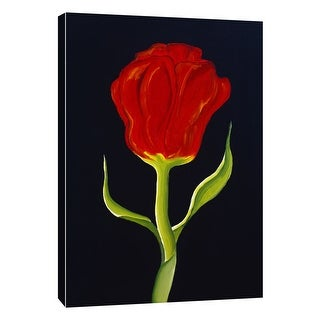 """PTM Images 9-105268  PTM Canvas Collection 10"""" x 8"""" - """"Red Tulip"""" Giclee Poppies Art Print on Canvas"""