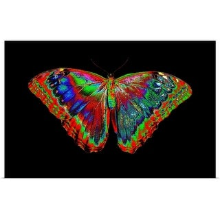 """""""Colorful Butterfly"""" Poster Print"""