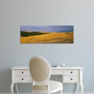 Easy Art Prints Panoramic Images's 'Trees on a landscape, Pienza, Siena Province, Tuscany, Italy' Premium Canvas Art