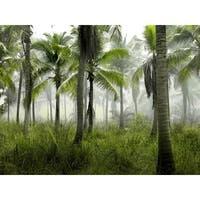 Tree, Palm And Fog Photograph Art Print