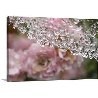 """Droplets and roses"" Canvas Wall Art"