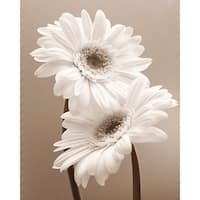 ''Two Daisies'' by Carol Sharp Floral Art Print (19.75 x 15.75 in.)