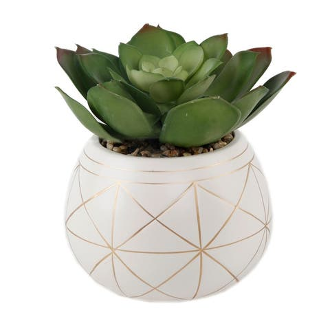 "Artificial Plant Succulent in 6.5"" Gold Geo Hand painted Ceramic Planter - ONE-SIZE"