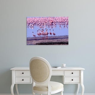 Easy Art Prints Charles Sleicher's 'Lesser Flamingo' Premium Canvas Art