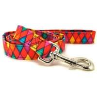 Multi-Color Harlequin Dog Leash