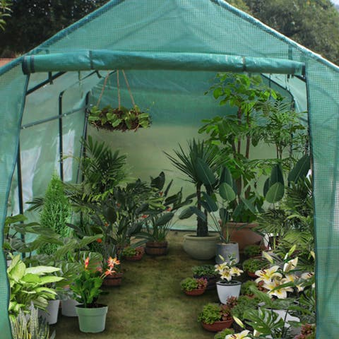 15x7x7Heavy Duty Greenhouse Plant Gardening Spiked Greenhouse Tent - 15x7x7
