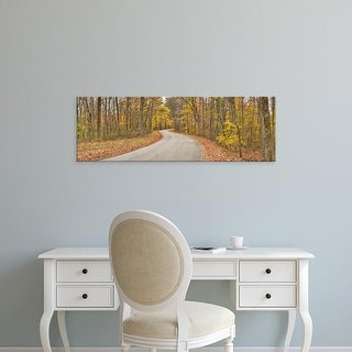 Easy Art Prints Panoramic Image 'Road passing through a forest, Brown County  Park, Brown County, Indiana' Canvas Art