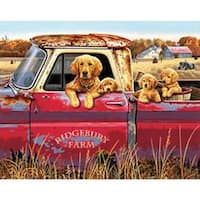 """Golden Ride - Paint Works Paint By Number Kit 16""""X20"""""""