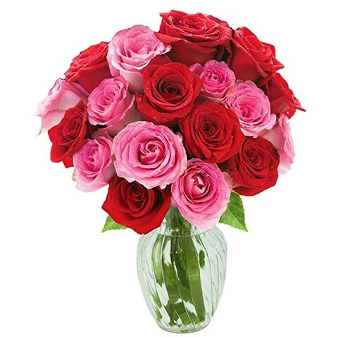 KaBloom: Bouquet of 18 Red and Pink Roses (Farm-Fresh, Long-Stem) with Vase
