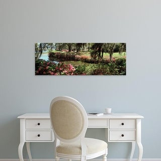 Easy Art Prints Panoramic Image 'Azaleas and willow trees in park, Charleston, Charleston, South Carolina' Canvas Art