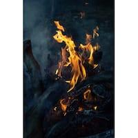 Firewood Photograph Wall Art Canvas