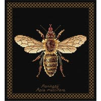 "Honey Bee On Aida Counted Cross Stitch Kit-8""X8.25"" 18 Count"