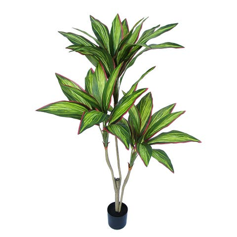 3.75ft Tropical Cordyline Ti Leaf Tree in Pot