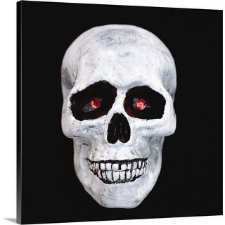 """Skull"" Canvas Wall Art"