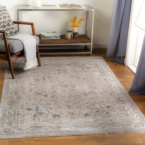 Zerke Distressed Traditional Area Rug