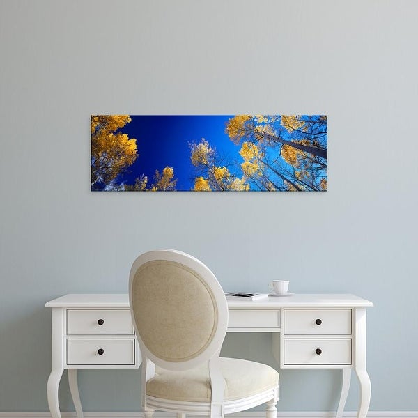 Easy Art Prints Panoramic Images's 'Low angle view of aspen trees in autumn, Colorado, USA' Premium Canvas Art