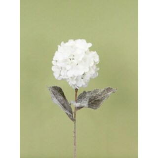 """Pack of 6 Snow Drift White Frosted Hydrangea Christmas Floral Stems 29"""""""