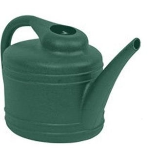 Dynamic Design WC4012FE Watering Can, 1Gallon, Fern Green