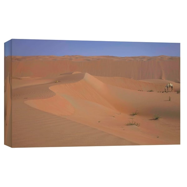 """PTM Images 9-102127 PTM Canvas Collection 8"""" x 10"""" - """"Treasured Heat"""" Giclee Camels Art Print on Canvas"""