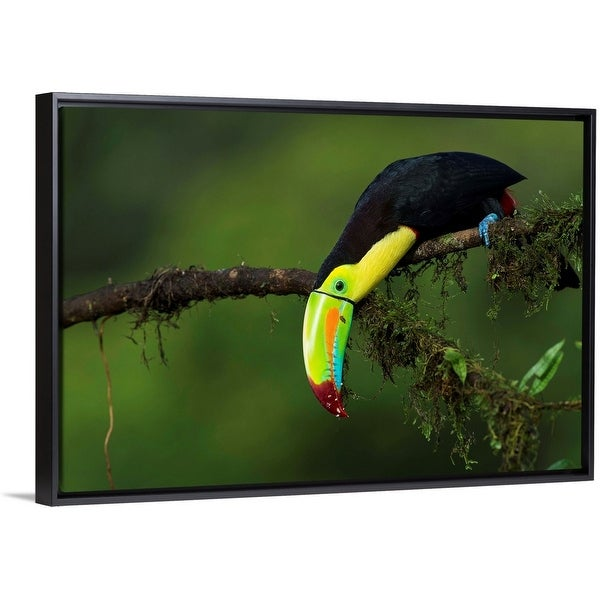 """""""The colors of Costa Rica"""" Black Float Frame Canvas Art"""