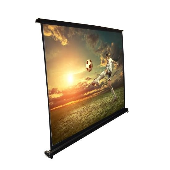 50-inch Projector Viewing Display Screen, Manual Retractable Pull-Out Style (40'' x 30'')