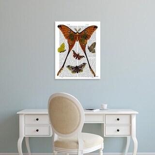 Easy Art Prints Fab Funky's 'Moth Plate 1' Premium Canvas Art