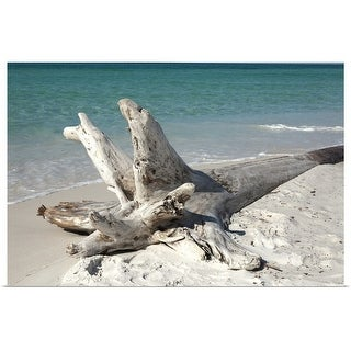 """Driftwood on beach"" Poster Print"