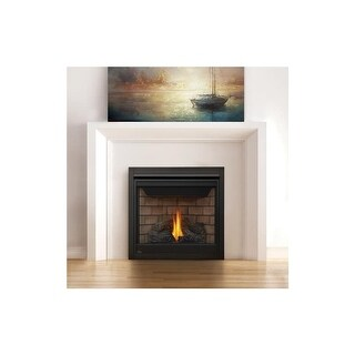 Napoleon B35TE 20000 BTU Built-In Direct Vent Natural Gas Fireplace with Safety Barrier and Electronic Ignition from the Ascent
