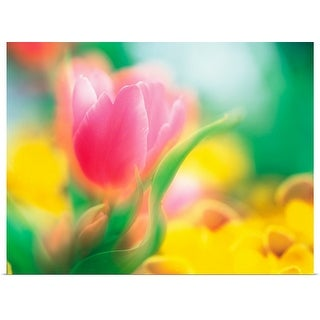 """Pink and yellow flowers"" Poster Print"
