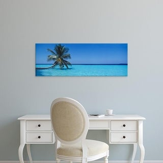 Easy Art Prints Panoramic Images's 'Palm tree in the sea, Maldives' Premium Canvas Art