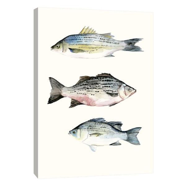 """PTM Images 9-108716 PTM Canvas Collection 10"""" x 8"""" - """"Fish Grouping 2"""" Giclee Fishes Art Print on Canvas"""