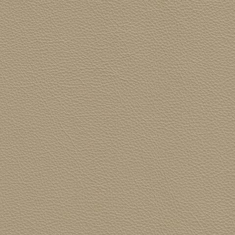Assanto Genuine Leather Sofa